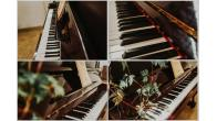 Used Pianos for Decoration - Image 7/8