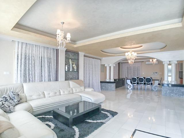 RN SPR 424 / 6 Bedroom villa in Potamos Germasogeias – For rent - 3/10
