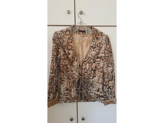 Clouse for sale  - 2/6